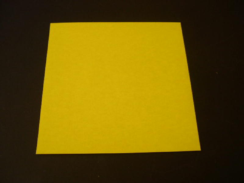 Origami Robin Folding Instructions